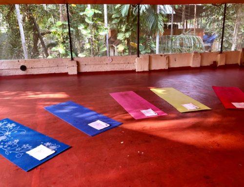 My Yoga teacher training experience @Padmakarmayoga in Kerala